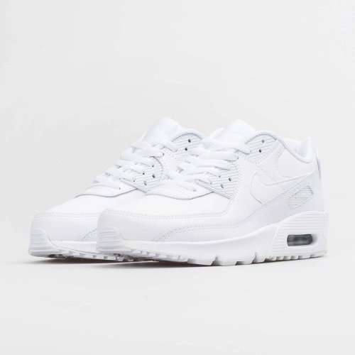 МАРАТОНКИ NIKE AIR MAX 90 LTR GS
